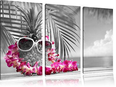 Ananas mit Sonnenbrille  auf 3-Teiler Leinwandbild Wanddeko Kunstdruck