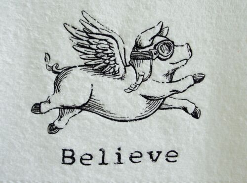 Flying+Pig+Face+cloth%2C+Flannel%2C+Embroidered+Flying+Pig+Believe+on+facecloth