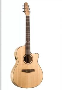 Performance Cutaway Seagull Acoustic/Electric Guitar $500 OBO