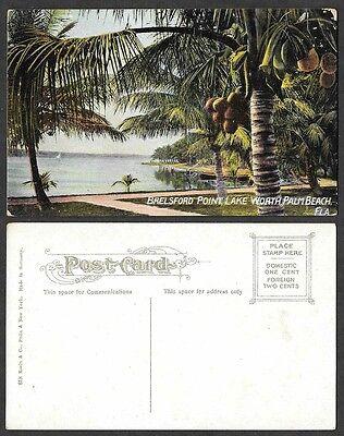 Old Florida Postcard   Palm Beach   Brelsford Point  Lake Worth