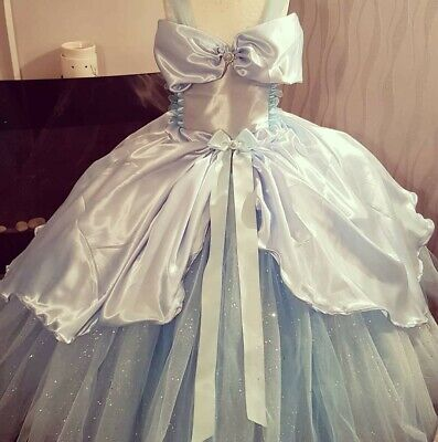 Cinderella satin fairytale luxury glitter tutu dress rose wedding party princess ()