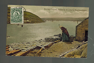 1912 Newfoundland Postcard cover to USA Drying Codfish in St John's