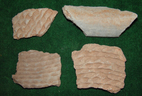 Lot of Native American Indian Pottery Shards - East TN, Northern Alabama or GA