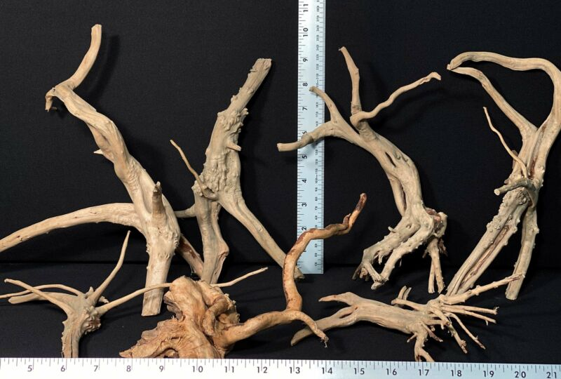 Spiderwood | 1lb. Assorted Bulk