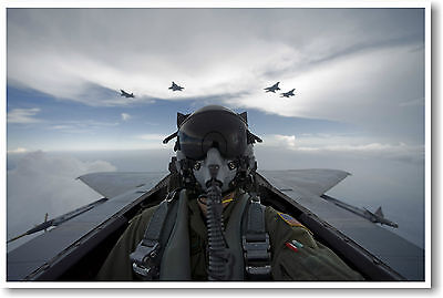 NEW Aviation Jet Fighter Air Force Military POSTER - F15 Pilot Self Portrait ()