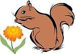 marigoldsquirrel