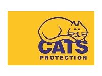 Could you spare some time to help with fundraising for Cats Protection?