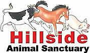 Hillside Animal Sanctuary Limited