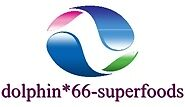 dolphin*66-superfoods