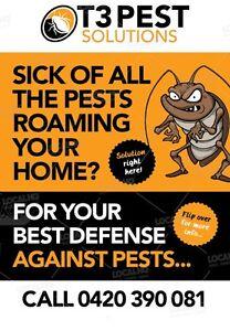 T3 pest solutions (pest control) Ashfield Ashfield Area Preview