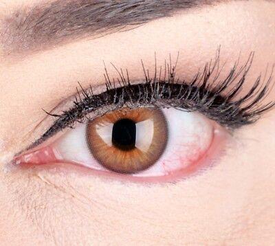 Braune farbige Kontaktlinsen Hazel sehr stark deckend mit natürlichem Effekt