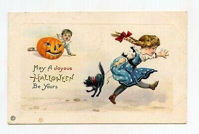 Halloween Et Citrouille (Halloween . Citrouille , enfants et chat noir .)