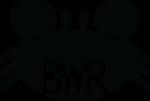Blackwater Racing