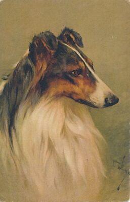 Arthur Wardle Signed Dog Postcard