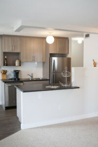 Renovated 1 bedrooms at Avalon Apartments! Call Today!