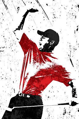 Tiger Woods PGA Tour Golfer Art Wall Indoor Room Outdoor Poster - POSTER 24x36