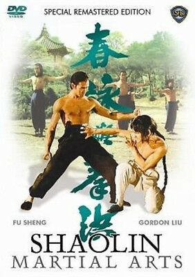 SHAOLIN MARTIAL ARTS - Hong Kong RARE Kung Fu Martial Arts Action movie