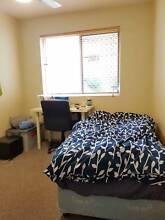 Room For Rent (Take Over Lease) St Lucia Brisbane South West Preview