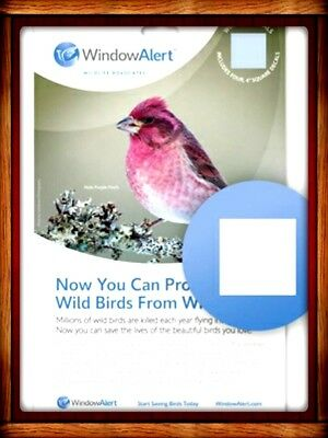 "WINDOW ALERT DECALS (4) - 4"" SQUARE DECALS SAVE BIRDS PREVENT WINDOW STRIKES"