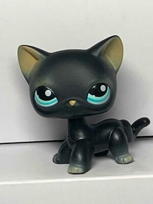 Littlest Pet Shop Cat # 994 Black Siamese Kitty Cat Short Hair Blue Eyes ](Black Kitty)