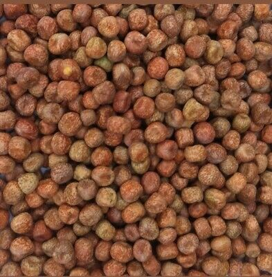 Maple Peas - Pigeon Feed cleaned 25kg