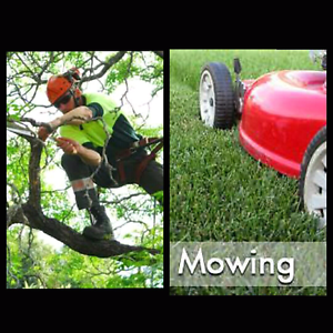 Lawn mowing from $35. Tree cutting removal FREE QUOTES Darwin Airport Darwin City Preview