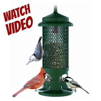 NEW BROME SQUIRREL BUSTER STANDARD BD1057 SQUIRREL PROOF BIRDFEEDER SEED SAVER!