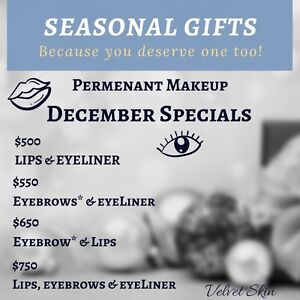 Christmas Special for Permanent Makeup!  At Velvet Skin  Oakville / Halton Region Toronto (GTA) image 1
