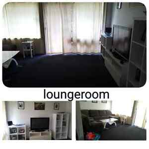 4 Bedroom Claymore Claymore Campbelltown Area Preview
