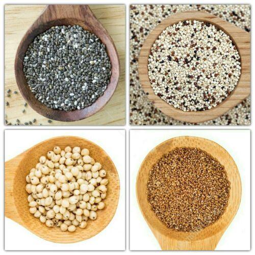 Ancient Grains; Grow Your Own (Series #1) Chia / Quinoa / Sorghum / Teff seeds