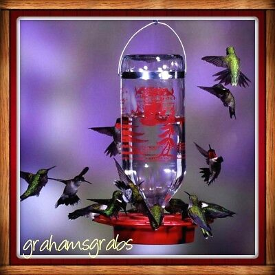 BEST-1 Glass Bottle HUMMINGBIRD FEEDER  32 OZ BEE & WASP PROOF EASY CLEAN