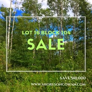 LAKE LOT **ON SALE FOR $62,900**