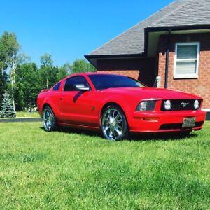 Mint 2005 Mustang GT