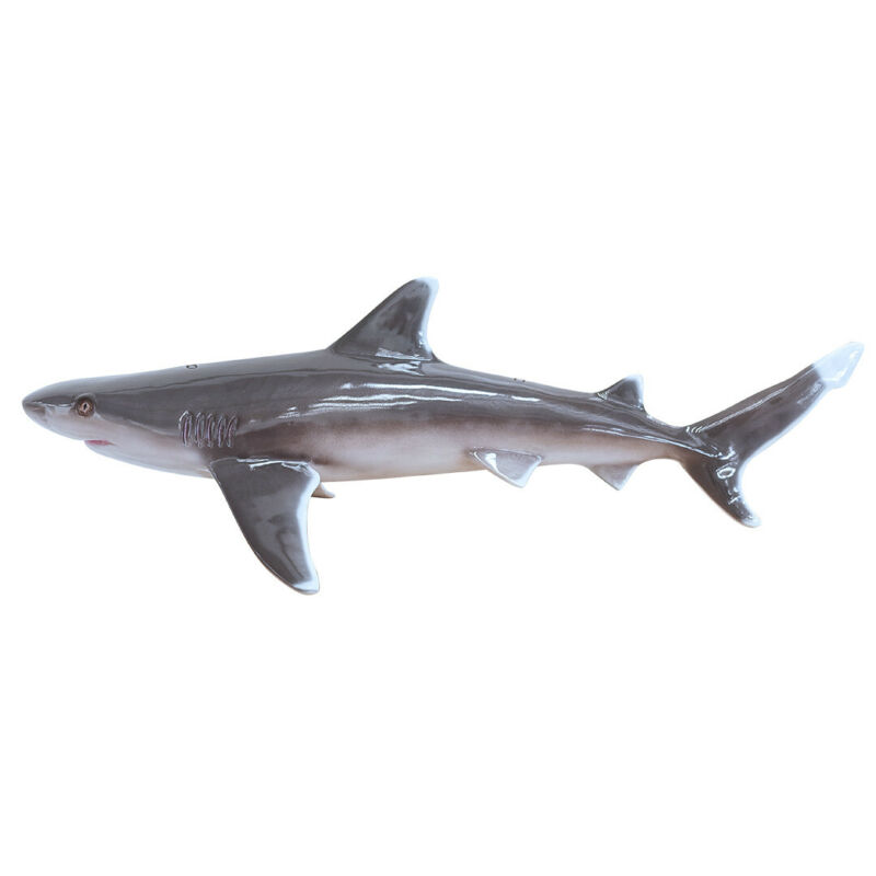 Silvertip Shark Life Size Statue Hanging 4FT