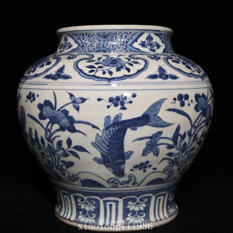"13""China Ancient porcelain Ming Dynasty Blue and white fish Algal stria jar"