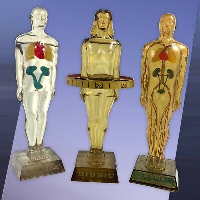 Vintage Medical Advertising Figures Hydro Diuril Pharmaceutical Anatomical Model