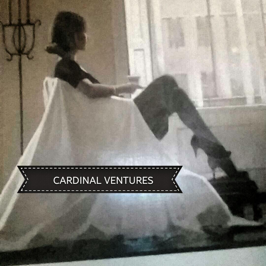 Cardinal Ventures Store
