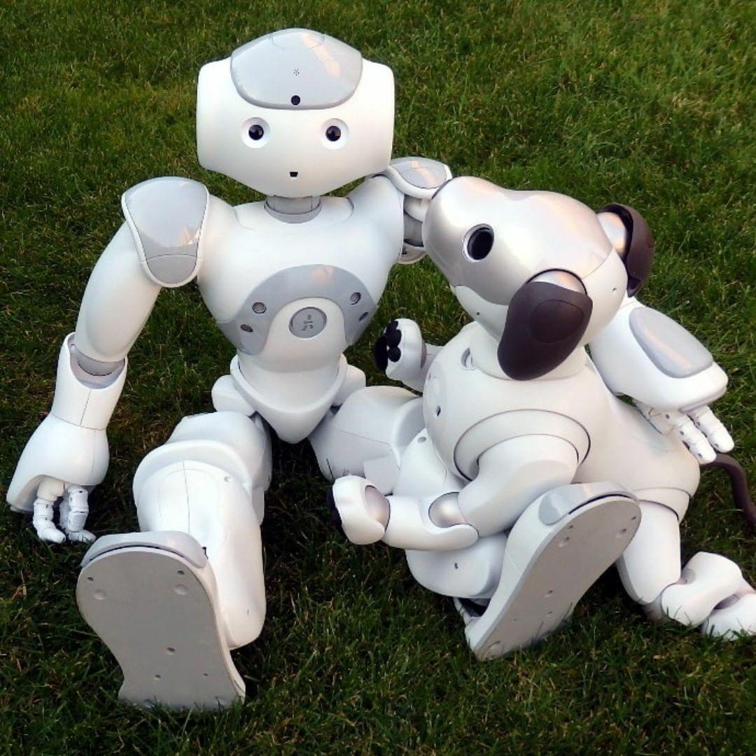 Sony Aibo Ers-1000   Roboter Hund - Robot Dog - Express Preorder - boxed