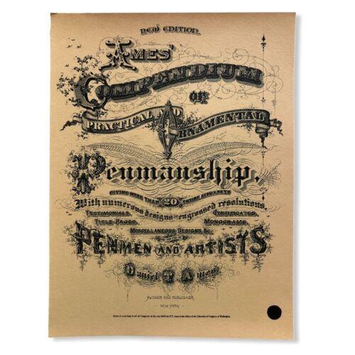 1883 Ames Compendium Practical & Ornamental Penmanship Guide Binder Reprint