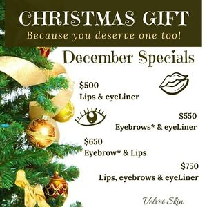 Christmas Special for Permanent Makeup!  At Velvet Skin  Oakville / Halton Region Toronto (GTA) image 2