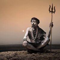 TOP INDIAN  ASTROLOGER & PSYCHIC HEALER 647-339-3851