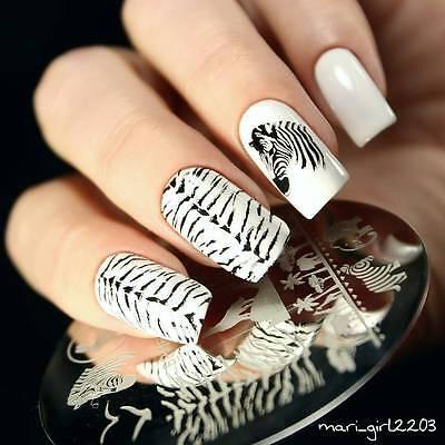 BORN PRETTY Nail Art Stamping Plate Zebra Wolf Animal Image Template #16](Wolf Nails)