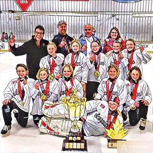 2017 Spring Hockey Team looking for players born 2008