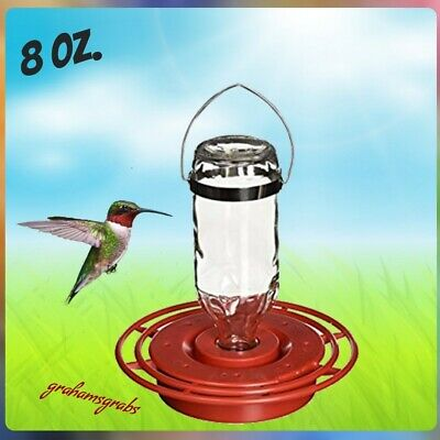 BEST-1 HUMMINGBIRD FEEDER W/ 8 OZ GLASS BOTTLE CUTE! MADE USA HUMMERS LOVE