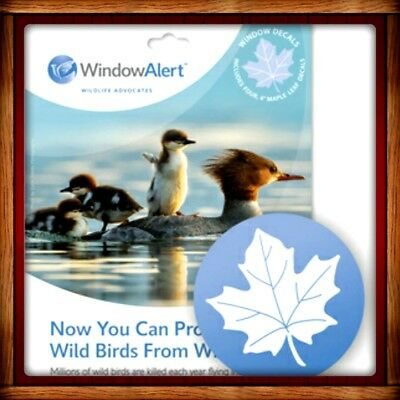 Window Alert MAPLE LEAF 4 DECALS Protect SAVE Wild Birds PREVENT WINDOW STRIKES