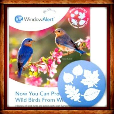 Window Alert LEAF MEDLEY 5 DECALS Protect SAVE Wild Birds PREVENT WINDOW STRIKES
