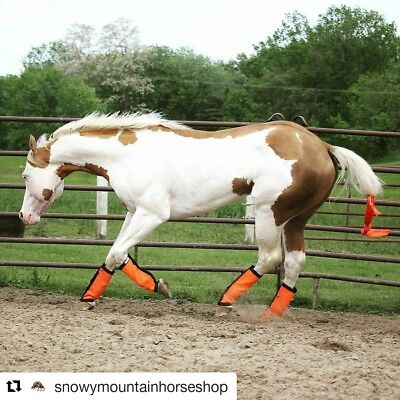 Fly Wraps / Fly Boots / Fly Leggings for Horses, Straight Style, Set of 4,Orange