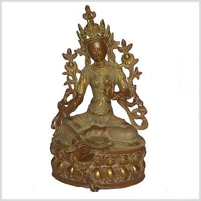 Shyama - Grüne Tara 36 cm 3,7 Kilo Buddhismus Beschützerin Messing Tibet Nepal