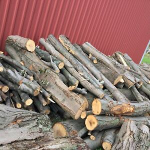 Firewood for sale-maple tree