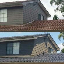 Sam roof painting Sandringham Bayside Area Preview